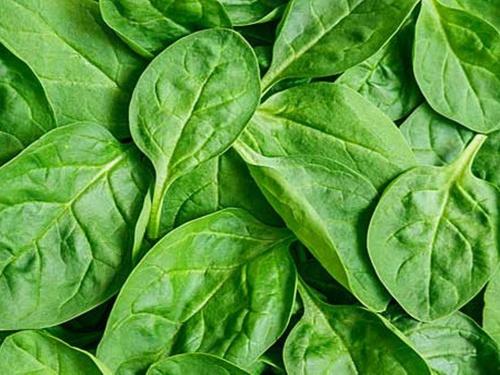 Alimente bune pentru sanatatea stomacului
