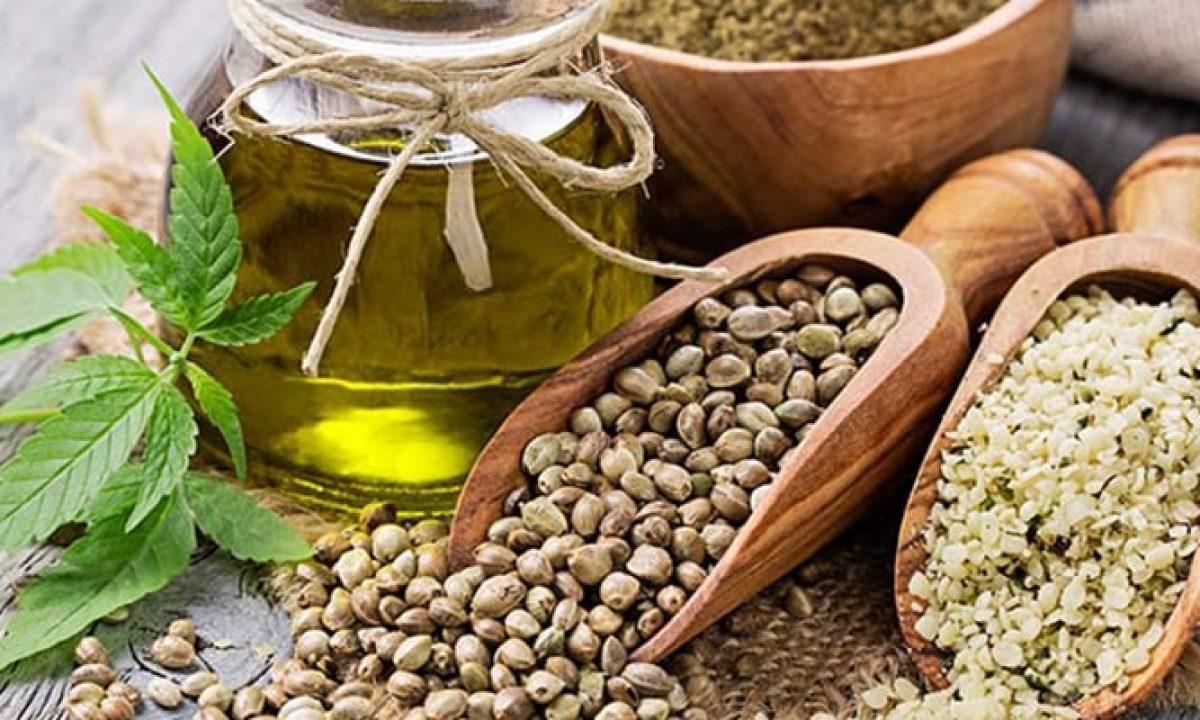 Semintele de canepa si beneficiile lor