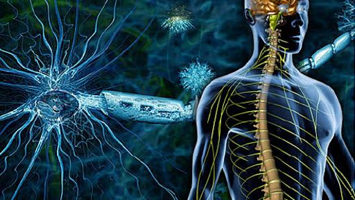 Ce reprezinta scleroza multipla